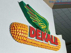 Signs By Benchmark cellular plastic Dekalb logo